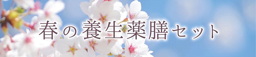 春の養生薬膳セット
