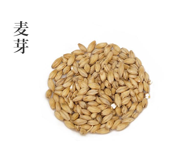 麦芽 (ばくが)