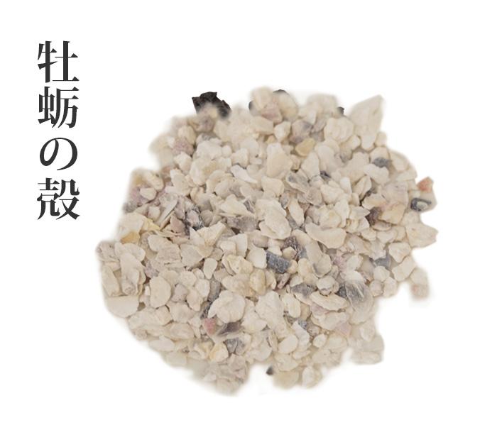 牡蛎 (ぼれい)