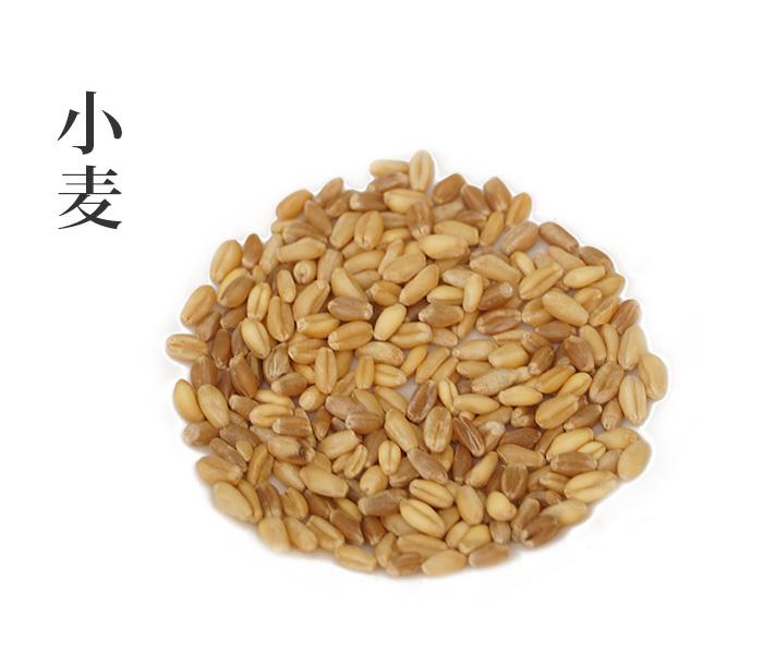 小麦(しょうばく)