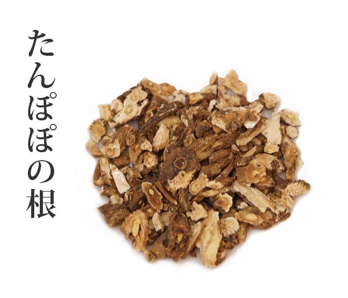 タンポポの根(たんぽぽのね)